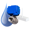 Insteon Water Sensors & Valves